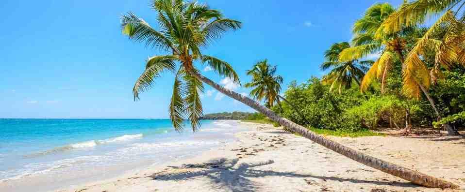 Quelle île est la moins chère?